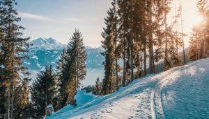 narciarstwo_blog_3